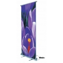 Roll-up Vision Electric - Obiecte personalizate